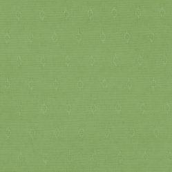 Jaq Green