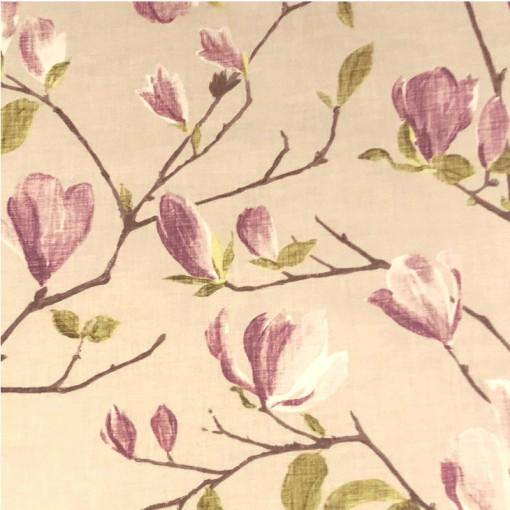 Magnolia Lilac