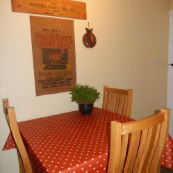 dotty burnt orange