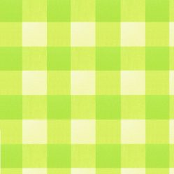oilcloth-great_gingham_lime