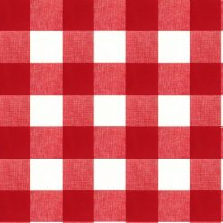 oilcloth-great_gingham_red