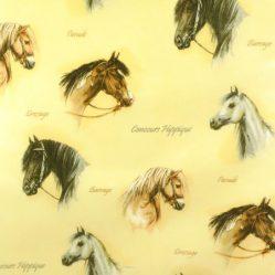 Horsey Gloss Oilcloth