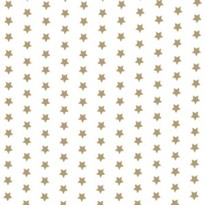New Star Taupe Gloss Oilcloth