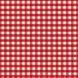 oilcloth-small_gingham_red