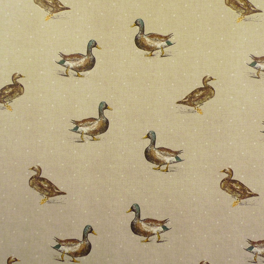 sandringham_duck
