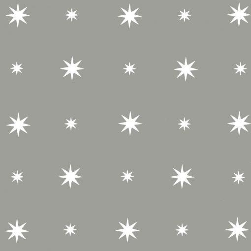 twinkle_silver
