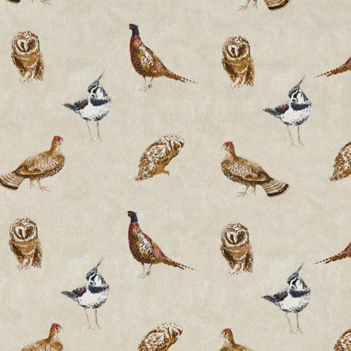 wild_birds
